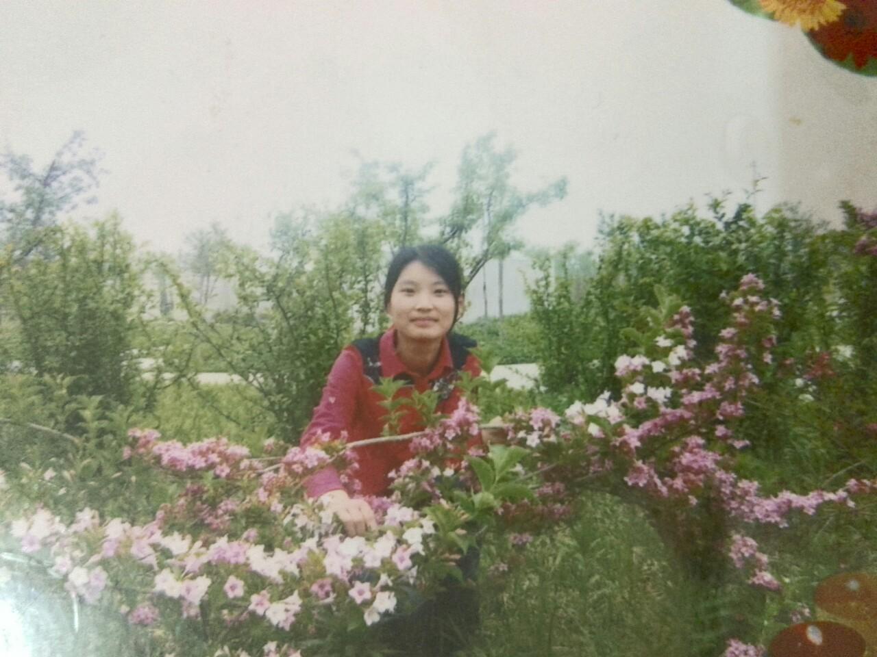 王凤丽图片