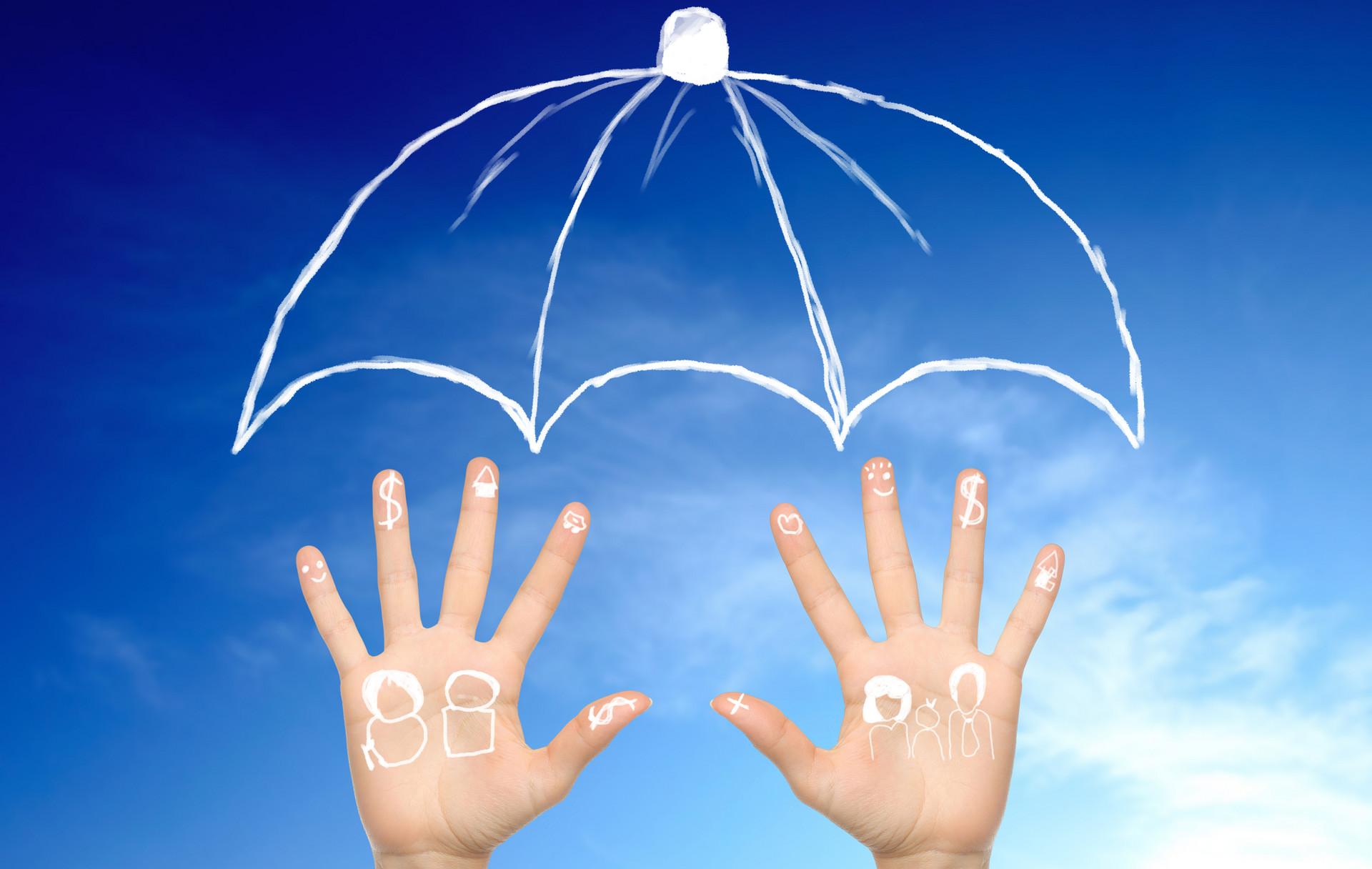 投保单和保险单的区别,投保单包含什么内容