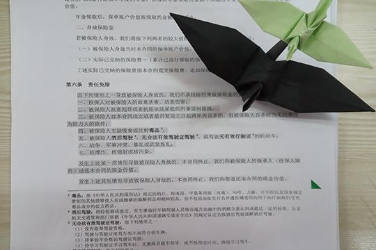 国寿康宁终身至尊版和国寿福臻享版投保规则一样吗?有什么区别?
