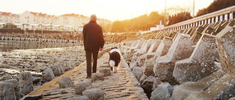 哪些保险适合农村独身老人呢?购买的时候需要注意什么