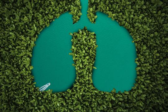 呼吸系统疾病投保攻略:哮喘、肺结节、肺结核,适合这些产品!