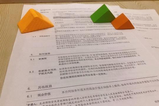 中英人寿鑫世纪投保规则及条款简介