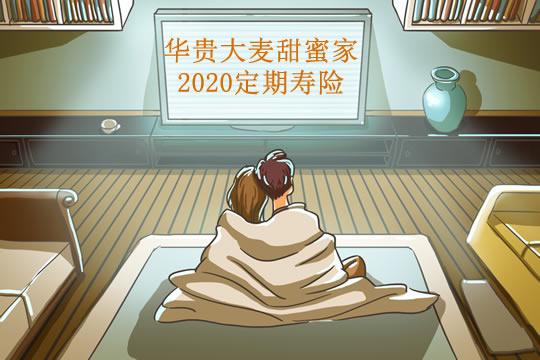 主打夫妻互保的定期寿险!华贵大麦甜蜜家2020测评