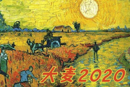 2020定寿险的扛把子,华贵大麦我是真服!