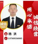 平安保险杨洪
