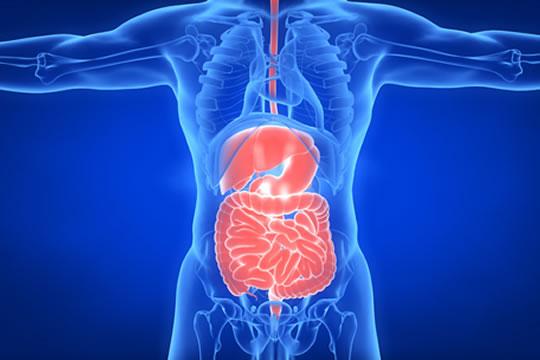 肠疾患者患者该怎么投保?投保攻略都在这里了!