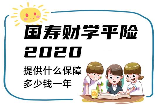 国寿财学平险2020提供什么保障?好不好值得买吗多少钱一年
