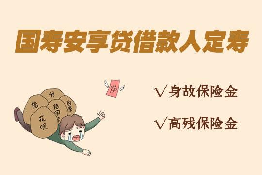 借款人定期寿险什么意思?国寿安享贷怎么样?好不好?