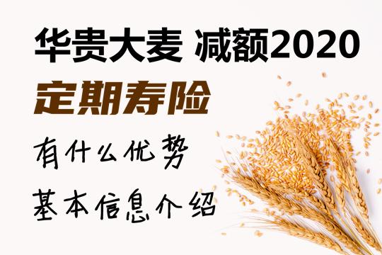 华贵大麦减额2020定期寿险怎么样?有什么优势好不好?谁能保
