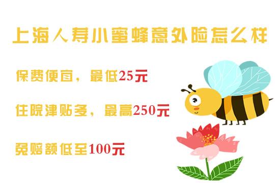 上海人寿小蜜蜂怎么样?好不好?保什么?在哪儿买?多少钱