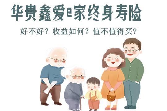 复利3.5%!华贵鑫爱e家终身寿险怎么样?收益如何?利益演示