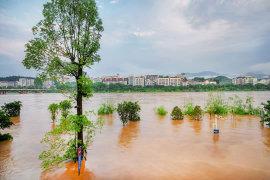 在洪灾过后,保险如何赔偿?