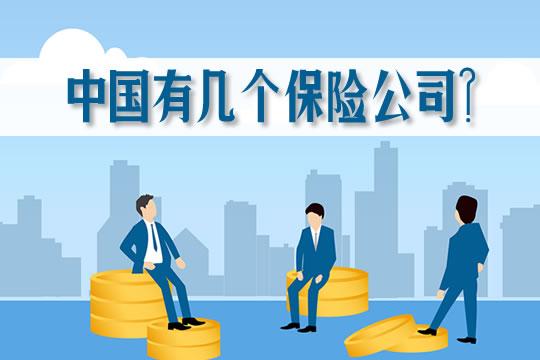 中国有几个保险公司?寿险公司是哪几家?财险公司数量多吗