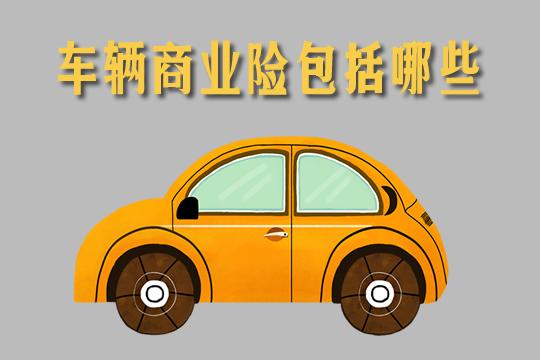 2021车辆商业险包括哪些?车辆商业险买哪几种比较好