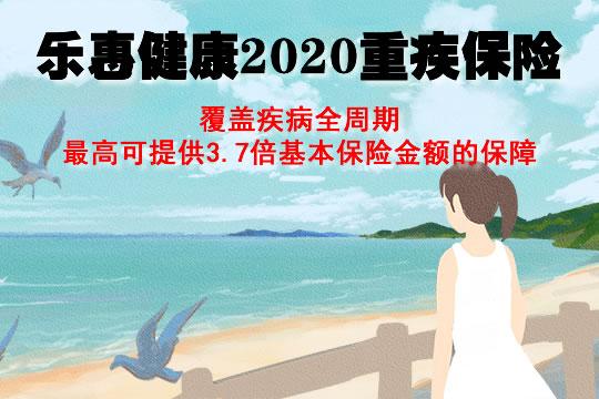 乐惠健康2020重疾保险是哪个保险公司?条款+保费测算