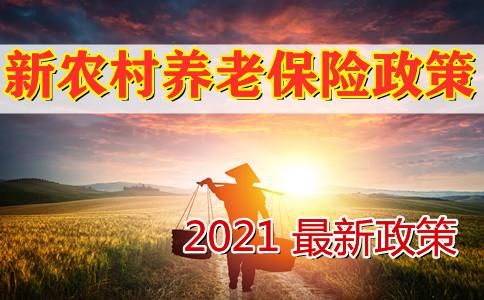 2021新农村养老保险政策,最新农村养老保险政策