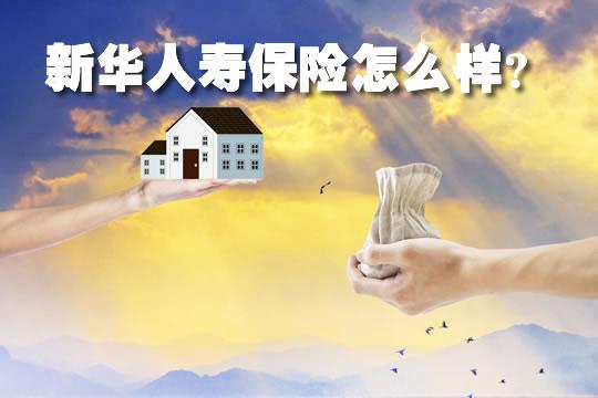 新华人寿保险怎么样,2021新华人寿保险怎么样?