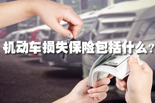 机动车损失保险包括什么2021,机动车损失保险包括什么?