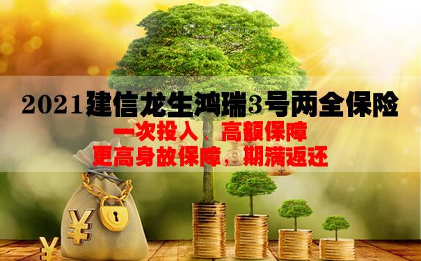 2021建信龙生鸿瑞3号两全保险怎么样?期满返还多少钱?条款