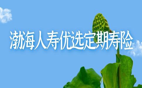 205元/年,渤海人寿优选定期寿险好不好?附案例分析