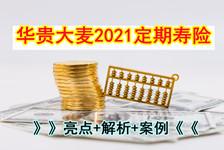 华贵大麦定期寿险2021怎么样?好不好?在哪买?亮点+解析+案例